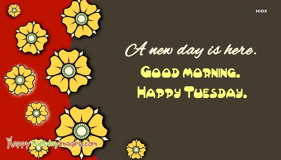 A New Day is Here. Good Morning. Happy Tuesday