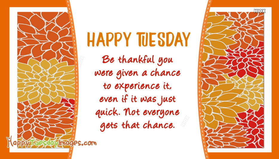 Be Thankful You Were Given A Chance To Experience It, Even If It Was Just Quick. Not Everyone Gets That Chance. Happy Tuesday