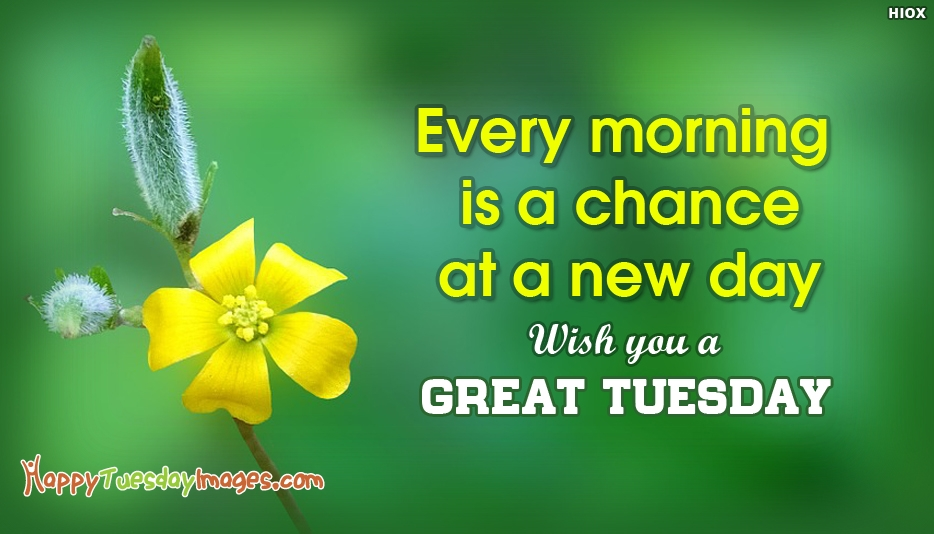 Every Morning is a Chance at a New Day. Wish You a Great Tuesday - Happy Tuesday Morning Images