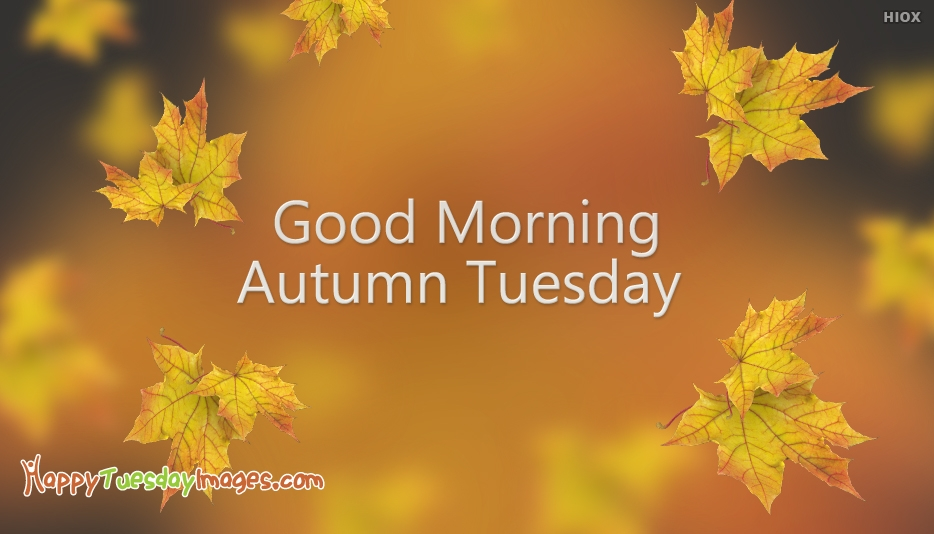 Good Morning Autumn Tuesday