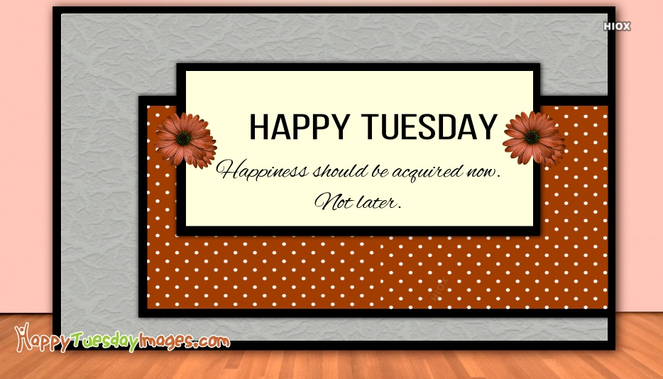 Happiness Should Be Acquired Now. Not Later. Happy Tuesday