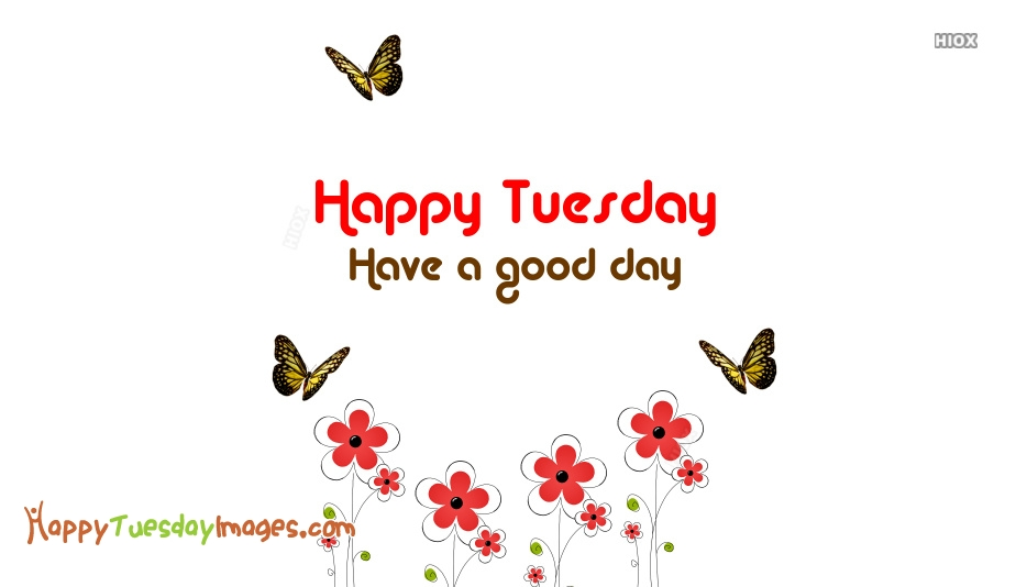 Happy Tuesday Have A Good Day Images
