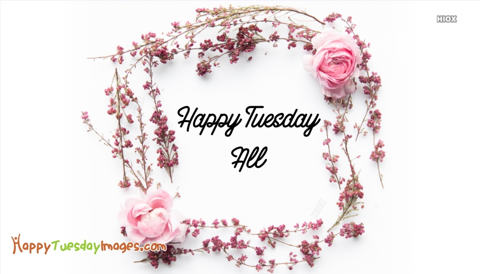 Happy Tuesday All