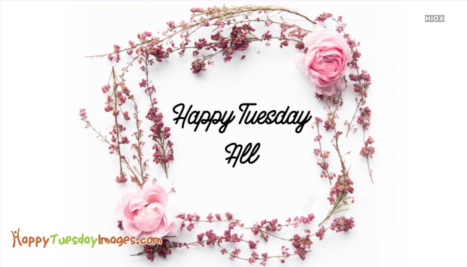 Happy Tuesday All