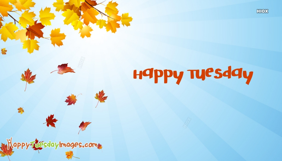 Happy Tuesday Autumn