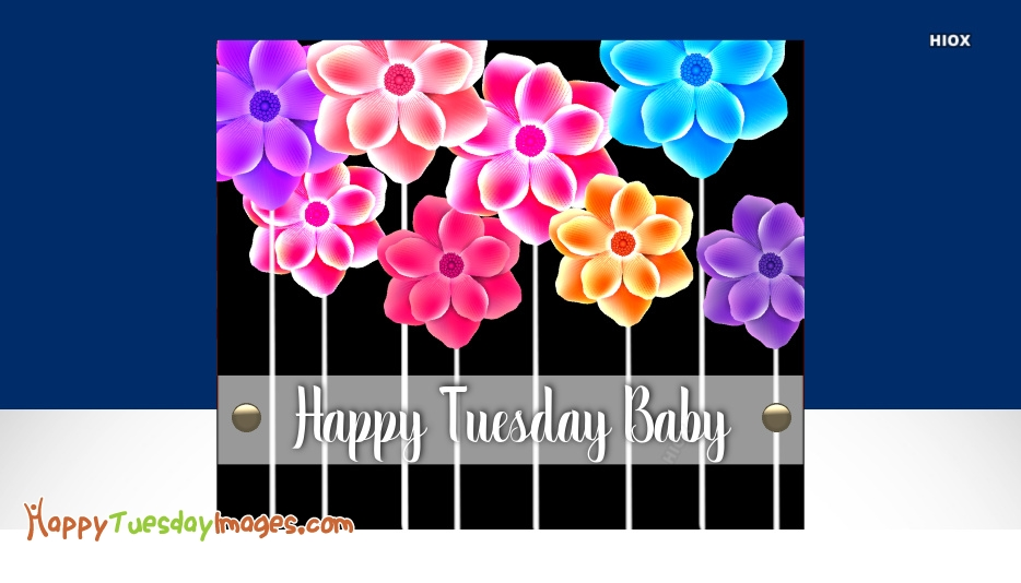 Happy Tuesday Baby Images, Pictures