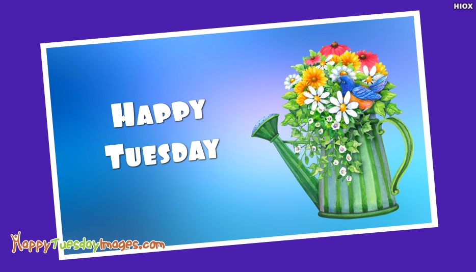 Happy Tuesday With Blue Background Image
