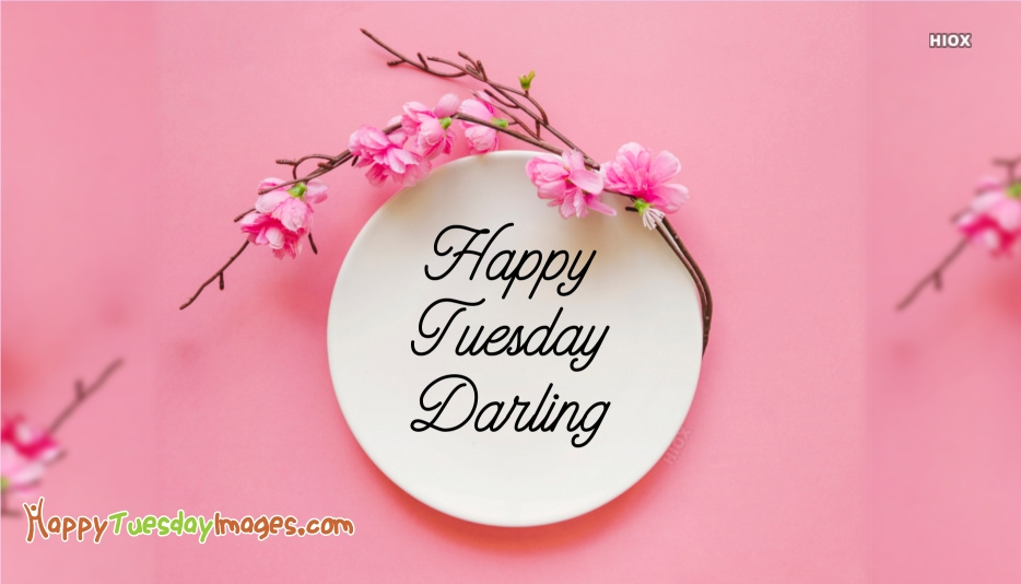 Good morning tuesday darling