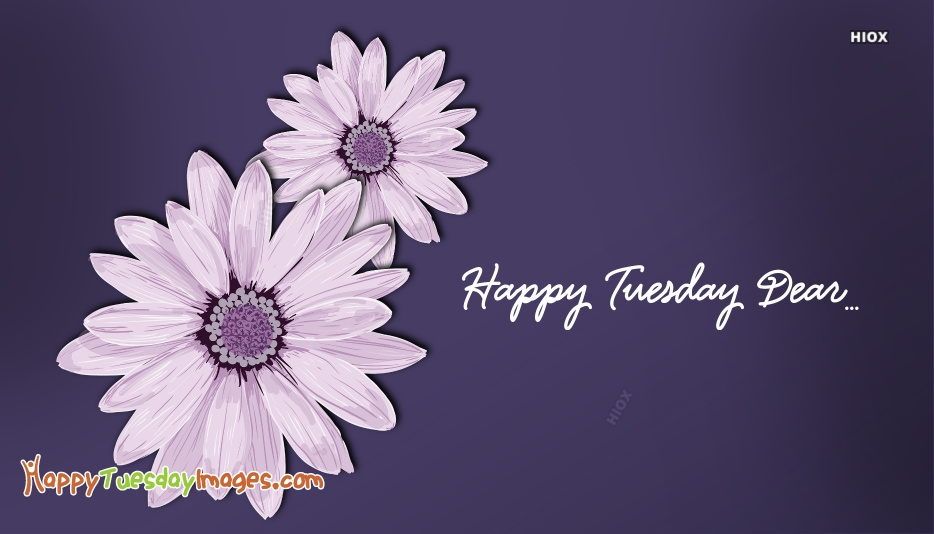 Happy Tuesday Dear