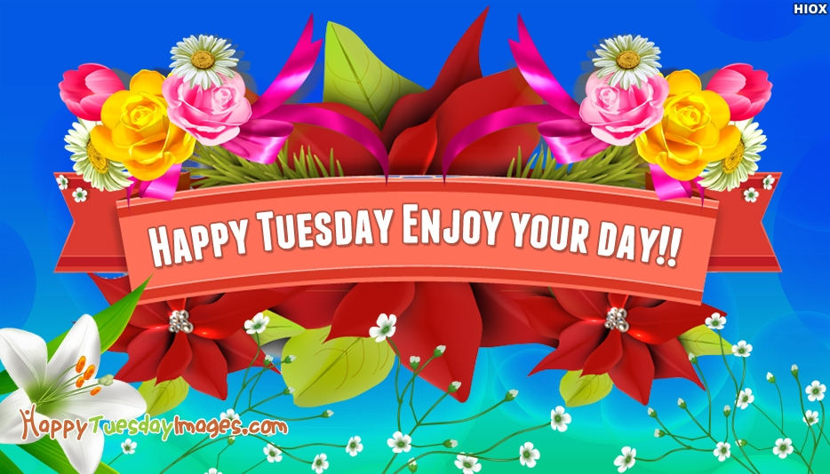 Happy Tuesday Enjoy Your Day