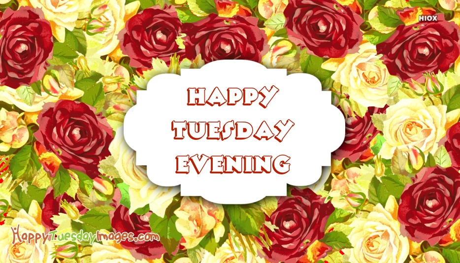 Happy Tuesday Evening Pics