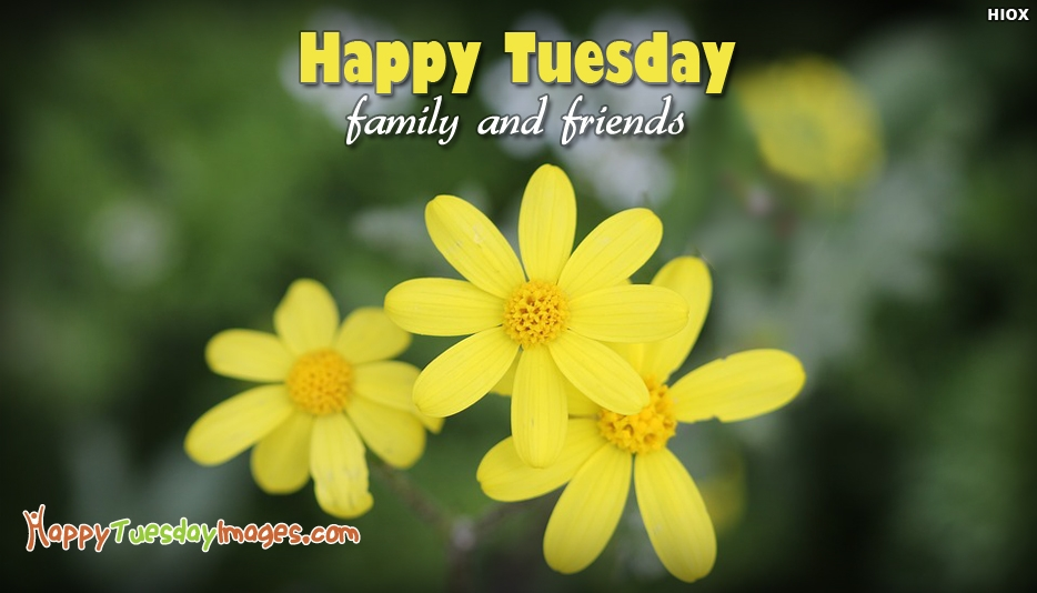 Happy Tuesday Family and Friends - Happy Tuesday Images for Friends and Family