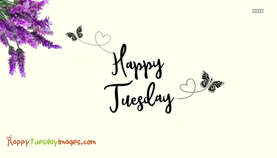 Happy Tuesday Images with Flowers