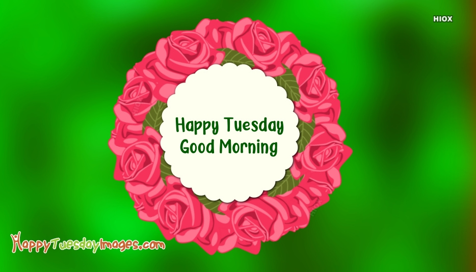 Happy Tuesday Images for Rose
