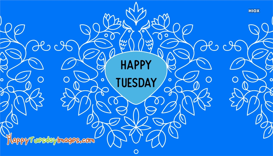 Happy Tuesday Hd
