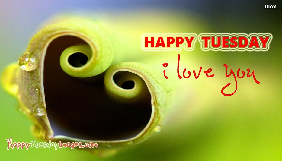 Happy Tuesday Images for Wife