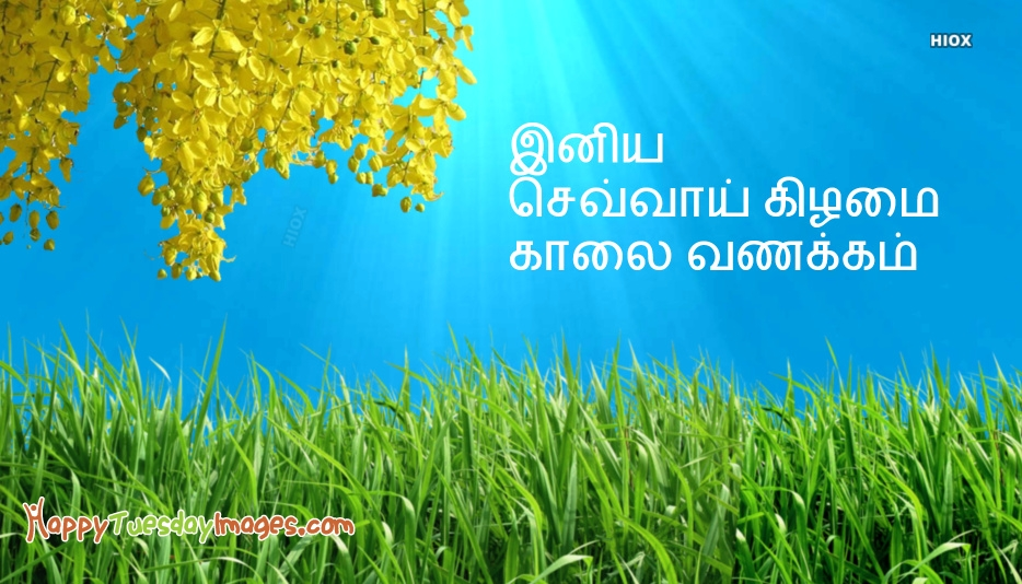 Happy Tuesday Images In Tamil