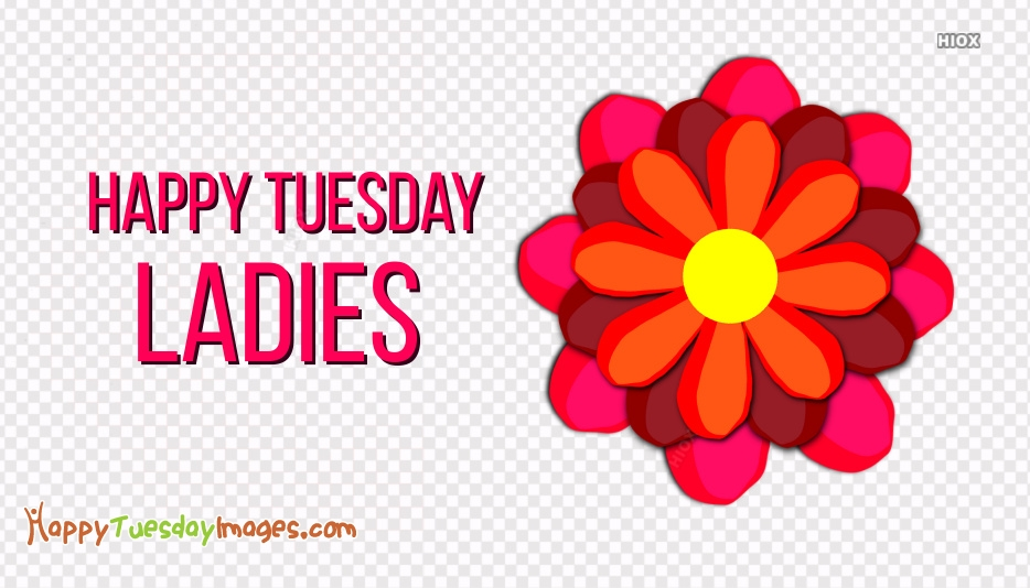 Happy Tuesday Ladies Images