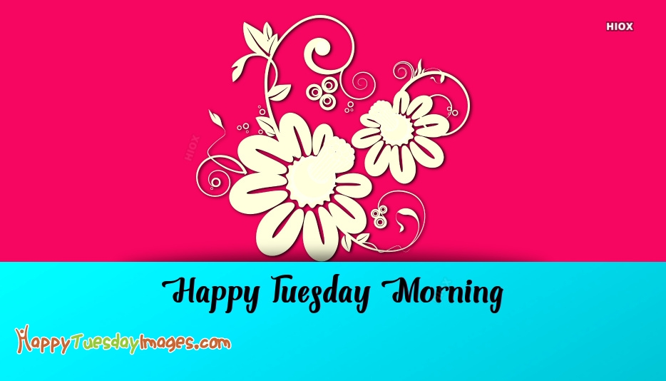 Happy Tuesday Images for Flowers