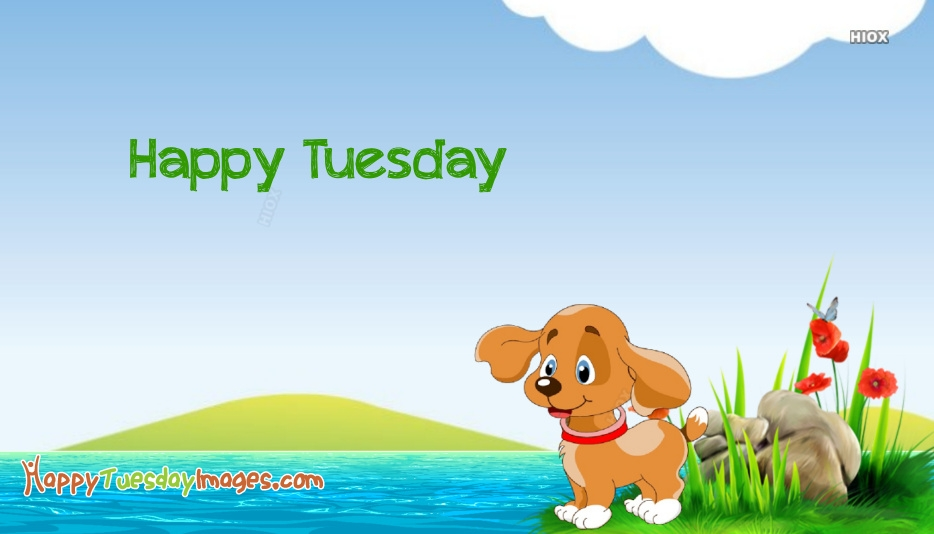Happy Tuesday Puppy Images