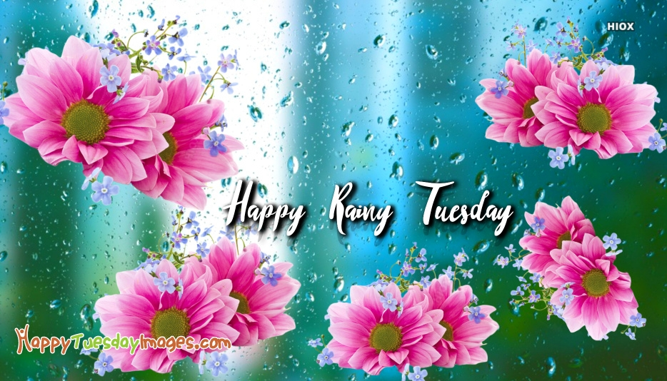 Happy Tuesday Rain Images