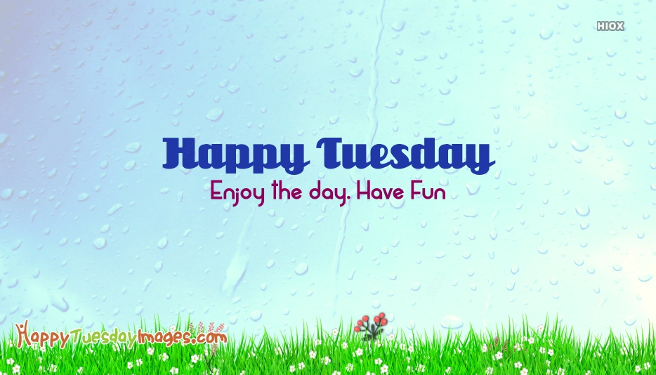 Happy Tuesday Rainy Day