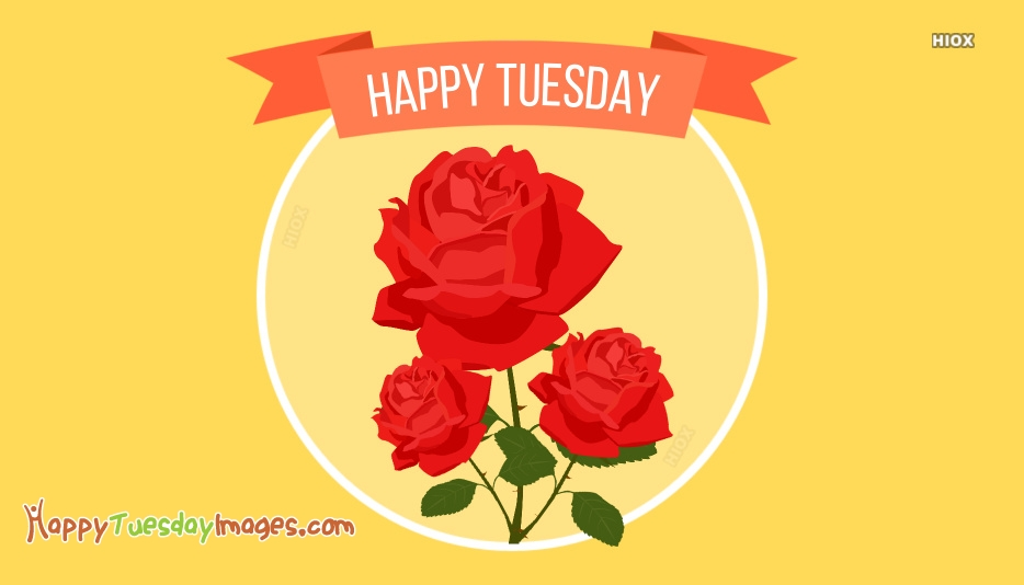 Happy Tuesday Roses Images