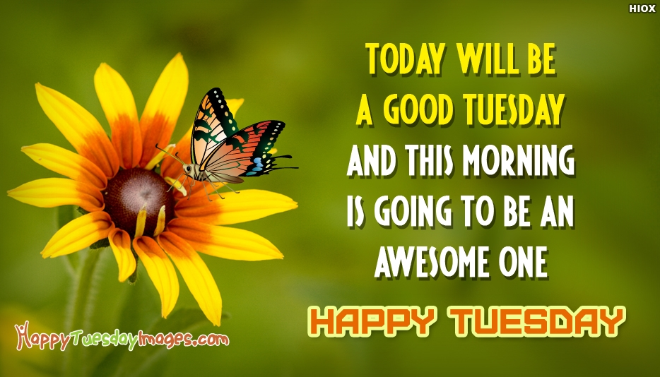 Happy Tuesday Positive Images