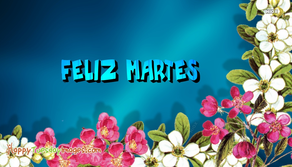 Happy Tuesday Spanish | Feliz Martes