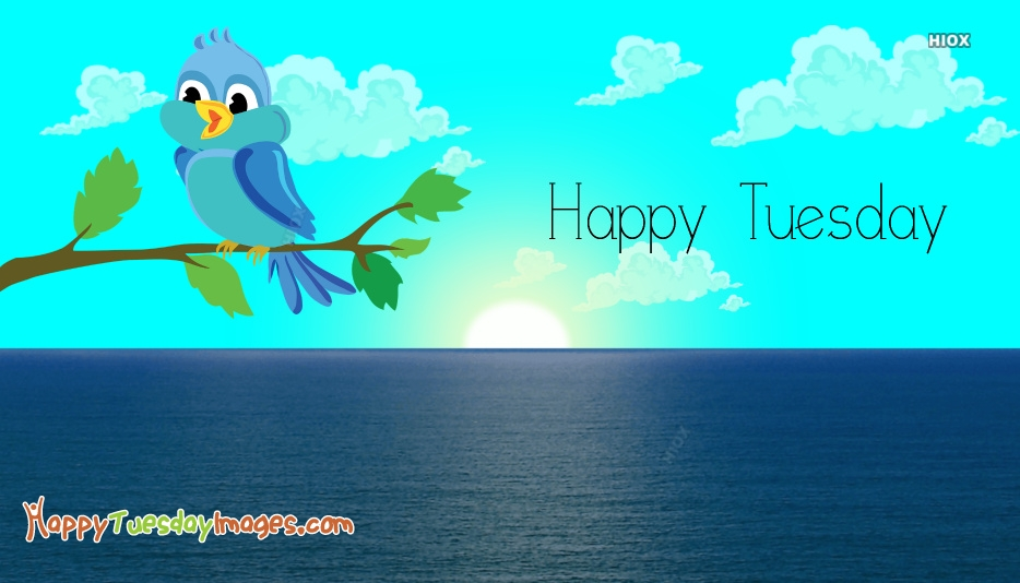 Happy Tuesday Sunshine Images