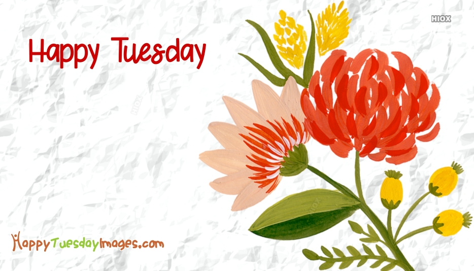 Happy Tuesday Images with Flowers Happy Tuesday Wallpaper