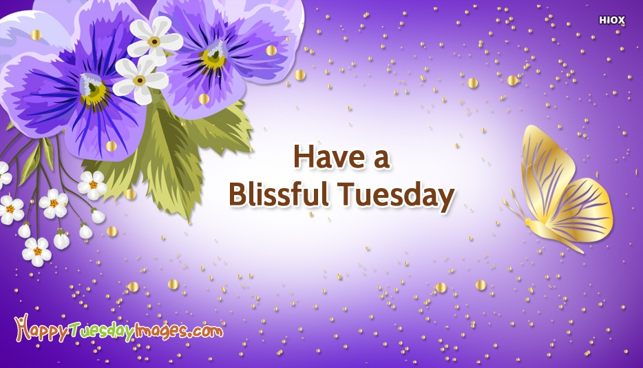 Have A Blissful Tuesday