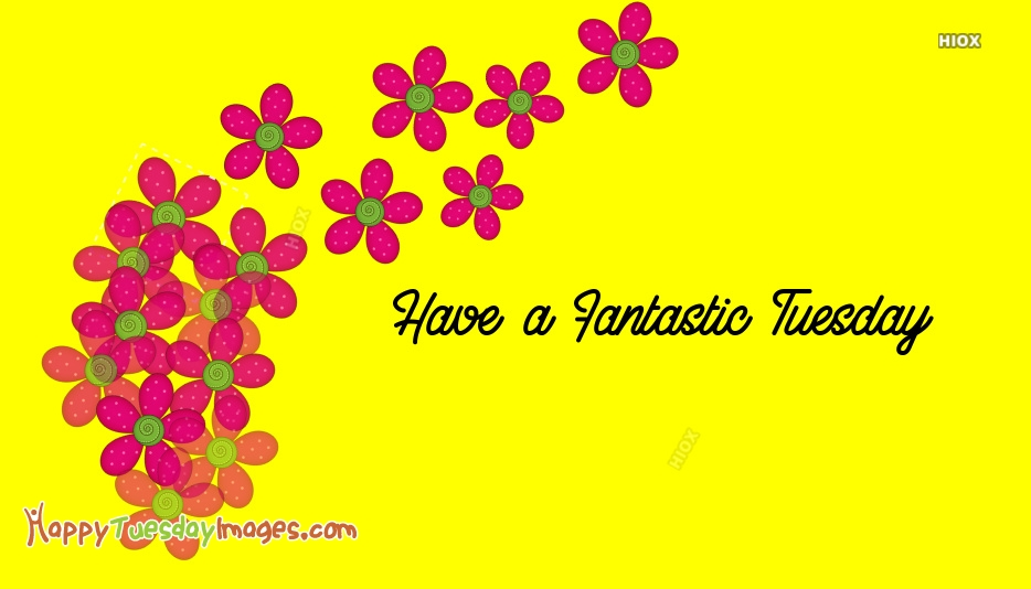 Fantastic Tuesday Wishes Images, Pictures