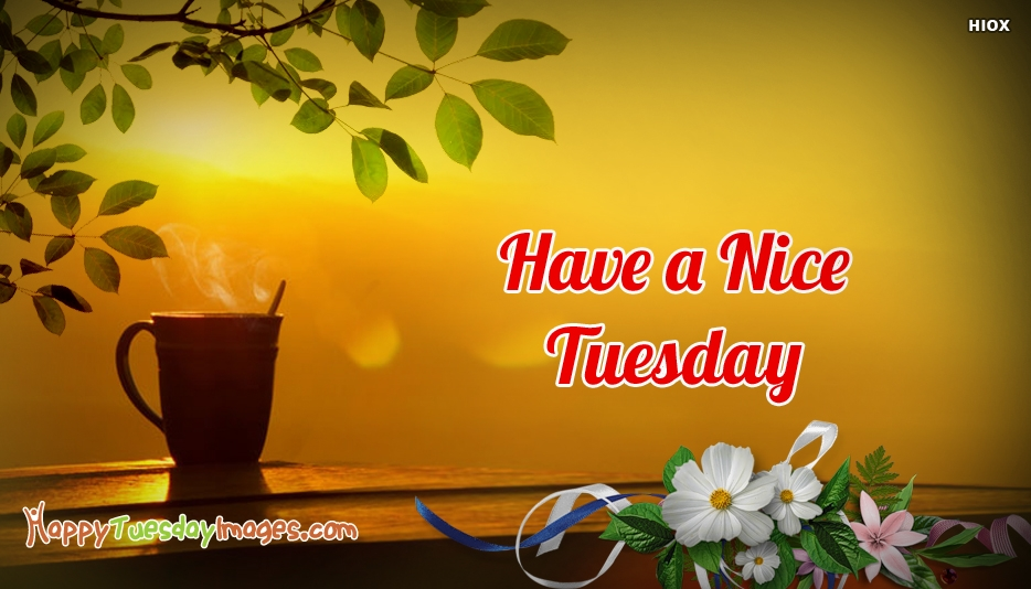 Have A Nice Tuesday Wishes - Happy Tuesday Images for Facebook