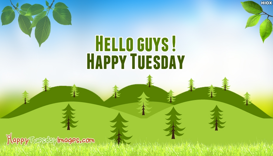 Hello Guys. Happy Tuesday
