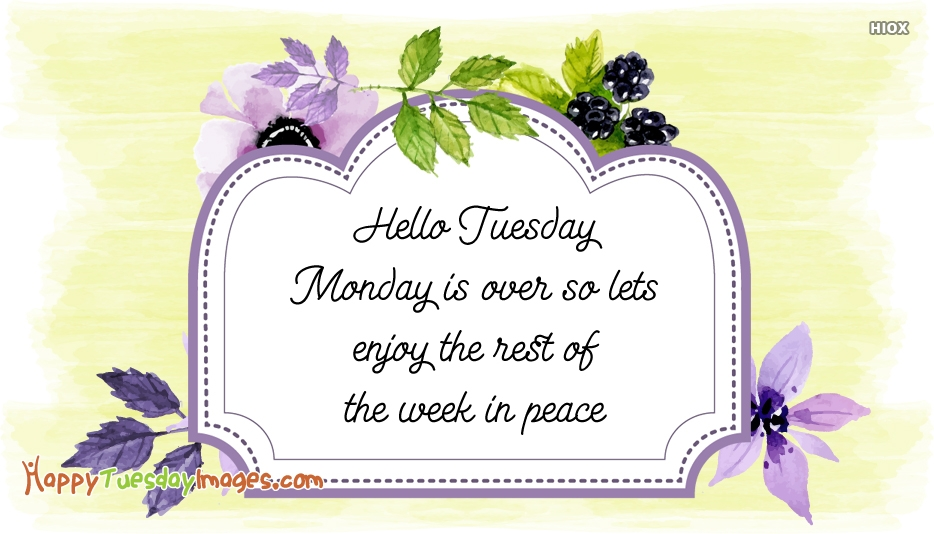 Hello Tuesday. Monday is Over So Lets Enjoy The Rest Of The Week In Peace