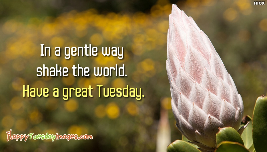 In a Gentle Way Shake the World. Have a Great Tuesday - Positive Tuesday Quotes and Images