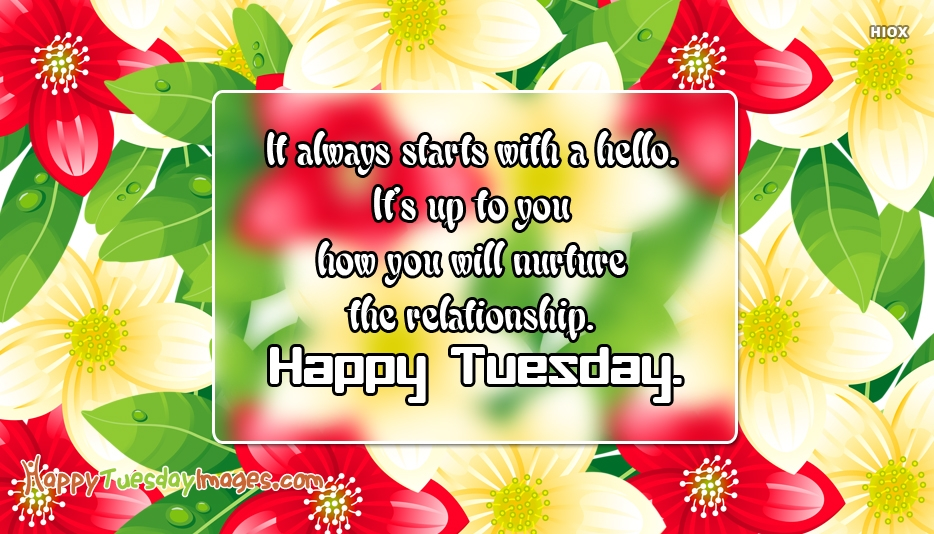 It Always Starts With A Hello. It's Up To You How You Will Nurture The Relationship. Happy Tuesday