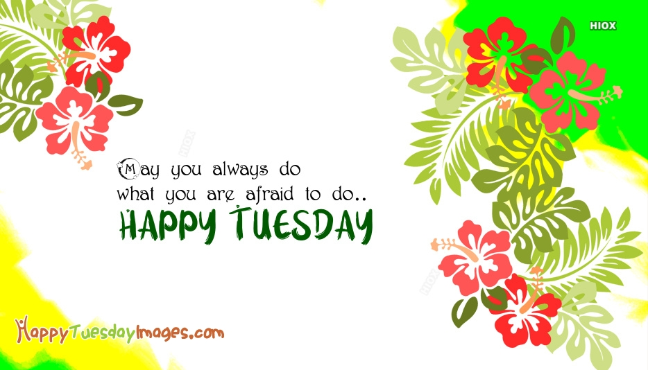 May You Always Do What You Are Afraid To Do..Happy Tuesday