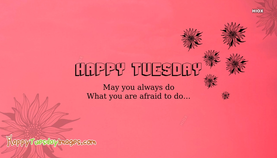 Happy Tuesday Sayings And Pictures