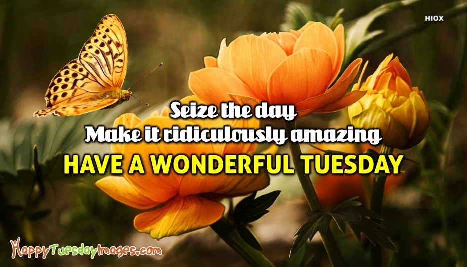 Happy Tuesday Images for Amazing