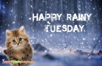 Happy Rainy Tuesday