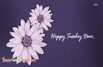 Happy Tuesday Dear