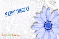 Happy Tuesday Greetings, Images