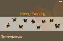 Happy Tuesday Butterfly Images