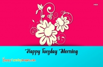 Happy Tuesday Morning Pictures