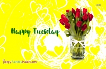 happy tuesday flower pics