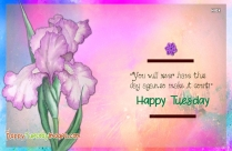 Happy Tuesday Quotes | You Will Never Have This Day Again So Make It Count