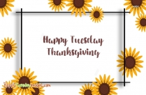 Happy Tuesday Thanksgiving