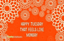 Happy Tuesday That Feels Like Monday